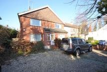 Maisonette to rent in Shenfield Road...