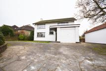 4 bedroom Detached property in South Weald Road...