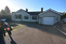 5 bedroom Detached Bungalow in Camps Heath, Oulton