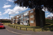 Flat to rent in Chilham Court, Frindsbury