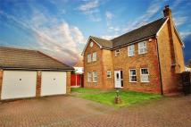 Bexleyheath Detached property to rent