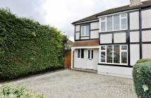 3 bed semi detached house to rent in Normanhurst Avenue...