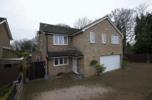5 bed Detached property for sale in Little Paxton, St Neots