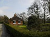 2 bedroom Detached Bungalow to rent in Cherry Tree Lane, Hedon...