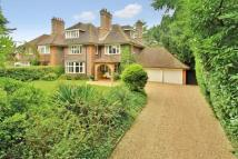 5 bed semi detached house for sale in Horsell, Surrey, GU21