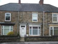 Albert Terraced property to rent