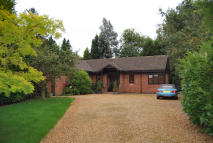 Bungalow to rent in Glapthorn Road, Oundle...
