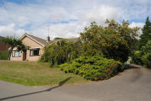 Detached Bungalow for sale in High Street, Titchmarsh...