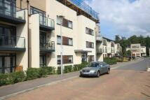 Thirleby Flat to rent