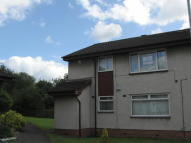 2 bedroom Flat to rent in HOLLY GROVE, Motherwell...