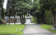 3 bed Detached Bungalow for sale in Lickey, Birmingham