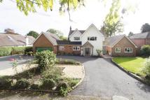 Detached home in The Avenue, Blackwell