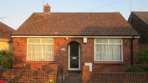 Bungalow to rent in Gilham Grove, Deal, CT14