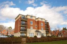 2 bed Apartment to rent in Cavalier Drive...