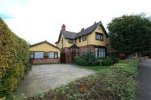 Detached house in All Saints Way...