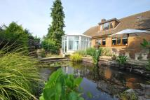 Detached home for sale in The Butts, Westbury, BA13