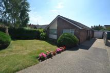 Detached Bungalow for sale in Canterbury Gardens...