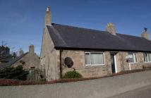 3 bedroom semi detached home for sale in 16 MacDonald Crescent...