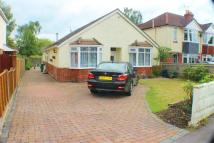 3 bed Detached Bungalow in Shaftesbury Avenue...