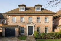 Detached house to rent in Priory Lane, Roehampton...