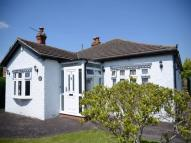 Detached Bungalow for sale in St Ives Close, THEALE...