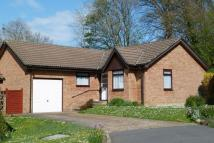 Detached Bungalow in Brookfield Gardens...