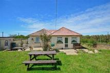 2 bed Detached Bungalow in Blackgang, Ventnor...