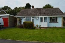 Detached Bungalow for sale in Hinton Road, Newport