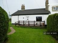3 bed Bungalow to rent in Colliers Close, Alnwick...