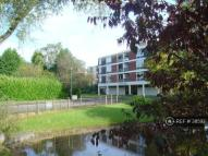 Flat Share in Chelmscote Rd,, Solihull...