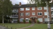 Queenswood Avenue Flat to rent