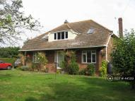 Bungalow to rent in Takeley, Herts., CM22