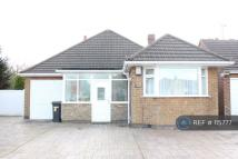 Bungalow to rent in June Avenue, Leicester...