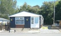 Bungalow to rent in Oak Drive, Wales, SA5