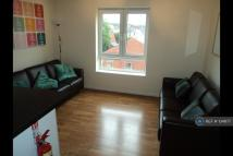 Cathays Flat Share