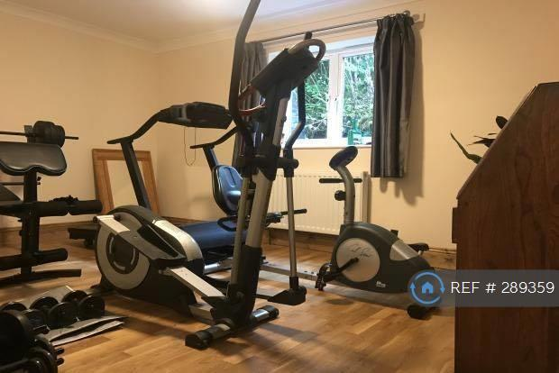 Downstairs Bedroom/Gym