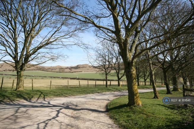 The Driveway Up To The Farm