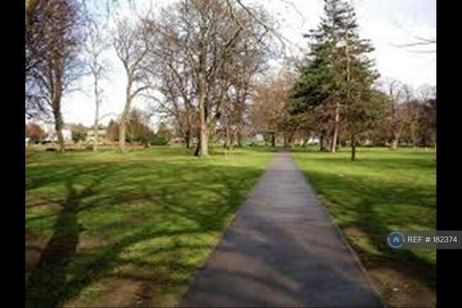 Acton Park