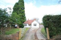 Detached Bungalow in Cranleigh