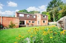 4 bedroom Detached house in Rudgwick
