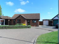 Detached Bungalow to rent in Selbey Close, Herne Bay...