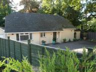 2 bed Detached Bungalow for sale in BRANKSOME WOOD ROAD...