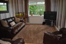 Ground Flat to rent in Isles Terrace, Newmilns...