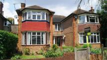 Detached property to rent in Craneford Way...