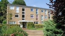 Harrowdene Gardens Flat to rent