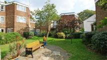 1 bed Flat to rent in Forman Court...