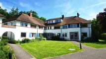 2 bed Flat to rent in Popes Avenue, Twickenham...