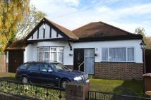 Bungalow for sale in Cotleigh Avenue, Bexley...