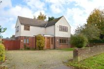 Ash Road Detached house for sale