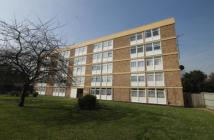 Edgell Road Flat to rent